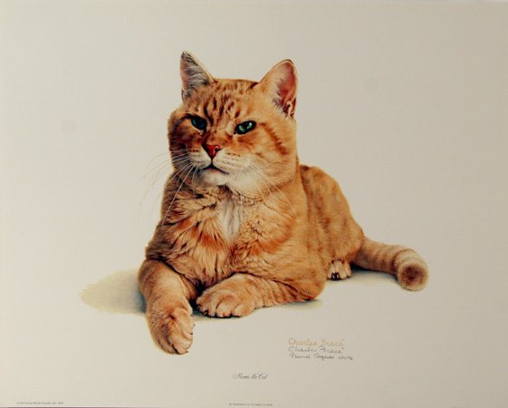 11: Charles Frace Signed Lithograph, House Cat