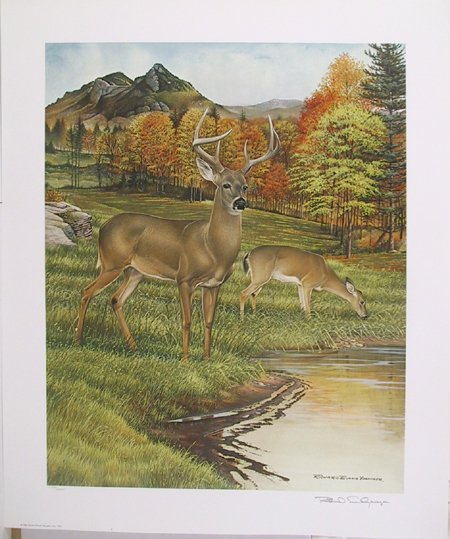 2014: Richard Evans Younger Signed Lithograph, Deer""