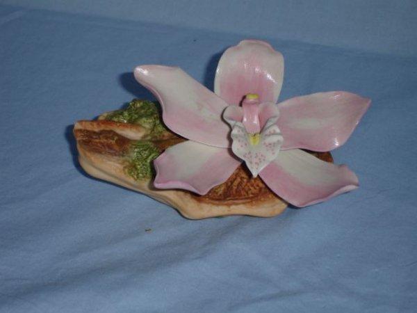 22: Burgues Porcelain, The Anniversary Orchid