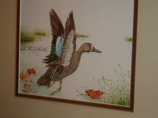 127: Limited Edition Sallie Middleton Blue Winged Teal