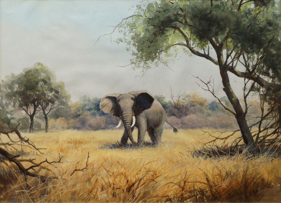 John Cyril Harrison, British 1898-1985- Bull Elephant;