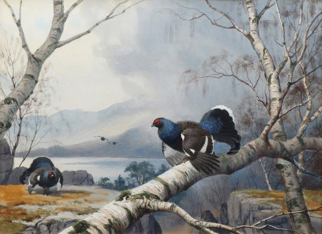 John Cyril Harrison, British 1898-1985- Black Grouse in