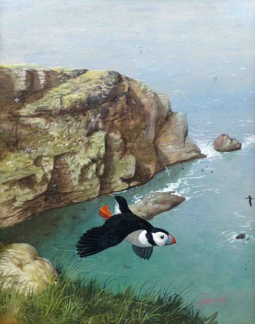 Julian Friers PRUA, Irish b.1956- ''Puffin on the North