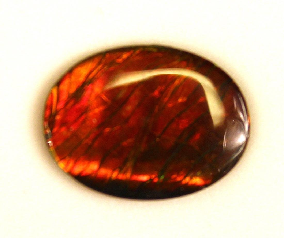 16.19x12.13MM Ammolite Triplet Gemstone