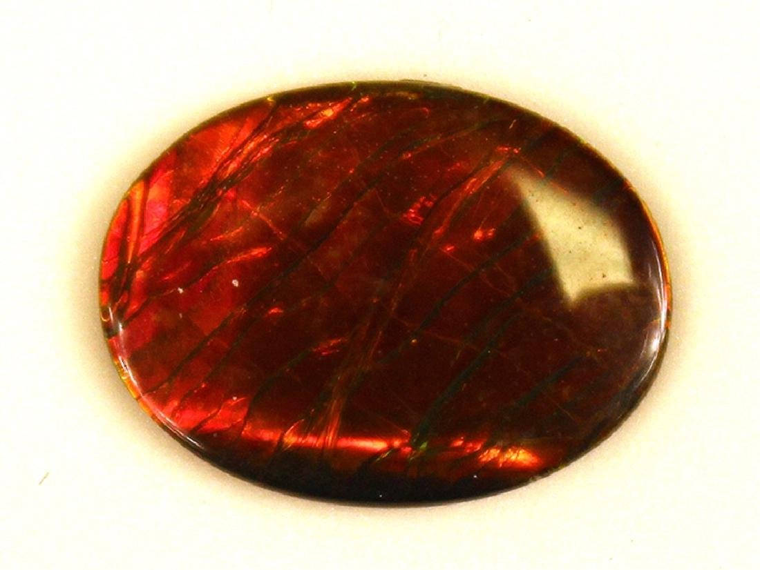 16.19x12.13MM Ammolite Triplet Gemstone - 2