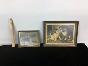 Pair Framed Pictures