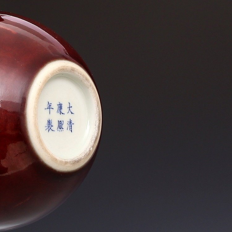 Chinese Qing Kangxi Red Porcelain  Vase - 8