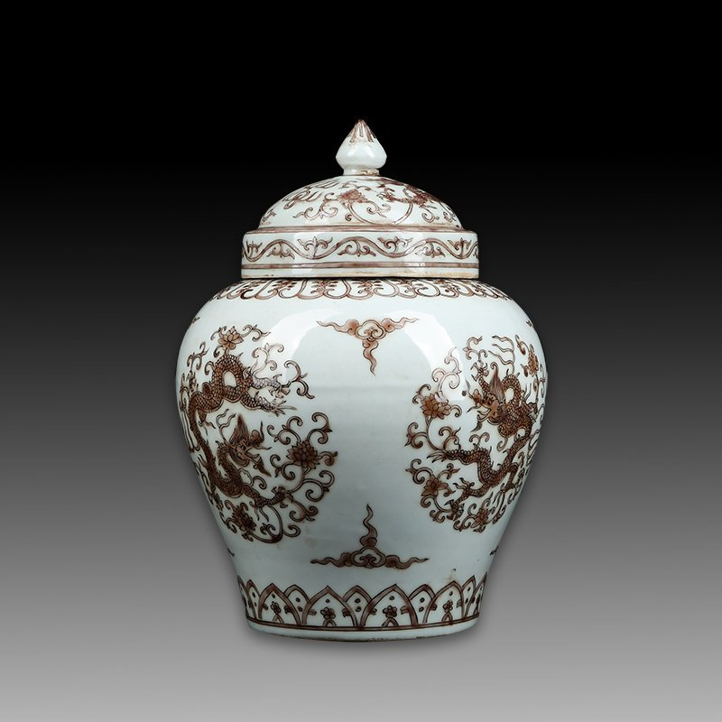Chinese Ming Wanli Porcelain Dragon Jar - 2