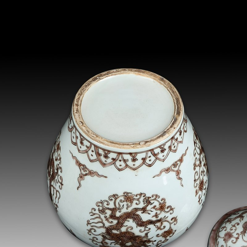 Chinese Ming Wanli Porcelain Dragon Jar - 4