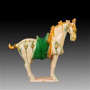 Chinese Three-colour glazed pottery Porcelain Horse.
