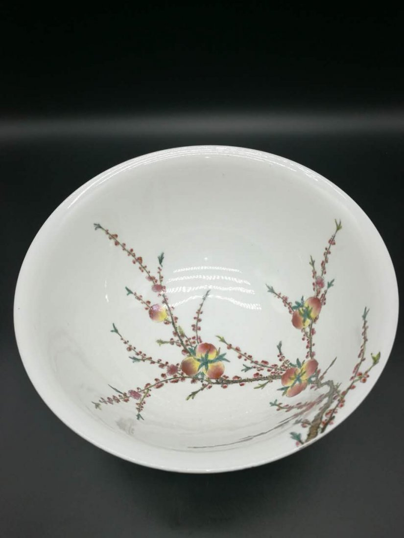 Chinese Thin and big Famille Rose Porcelain Bowl - 2