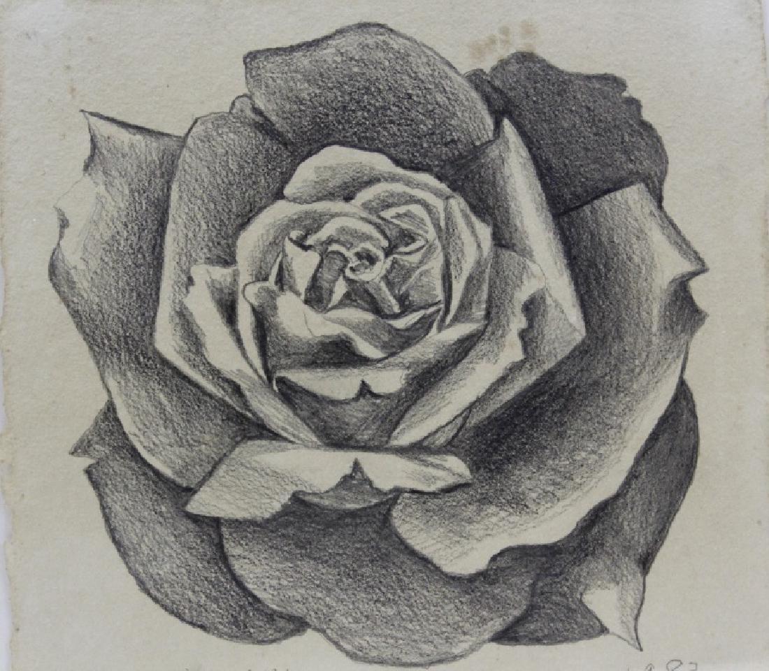 Pair LOWELL NESBITT Rose Floral Pencil Drawings - 3