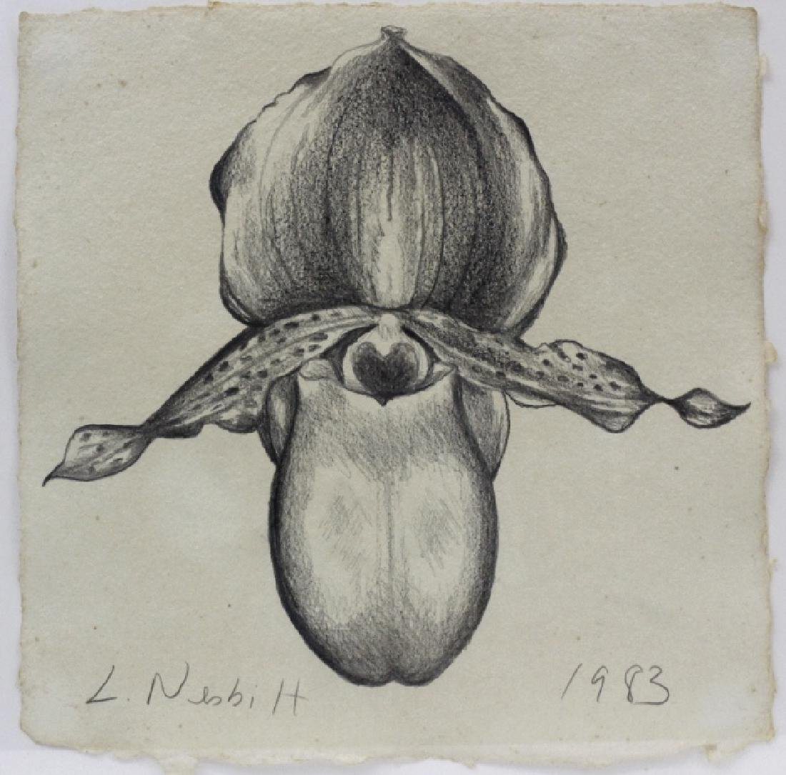 Pair LOWELL NESBITT Orchid Flower Pencil Drawing - 2