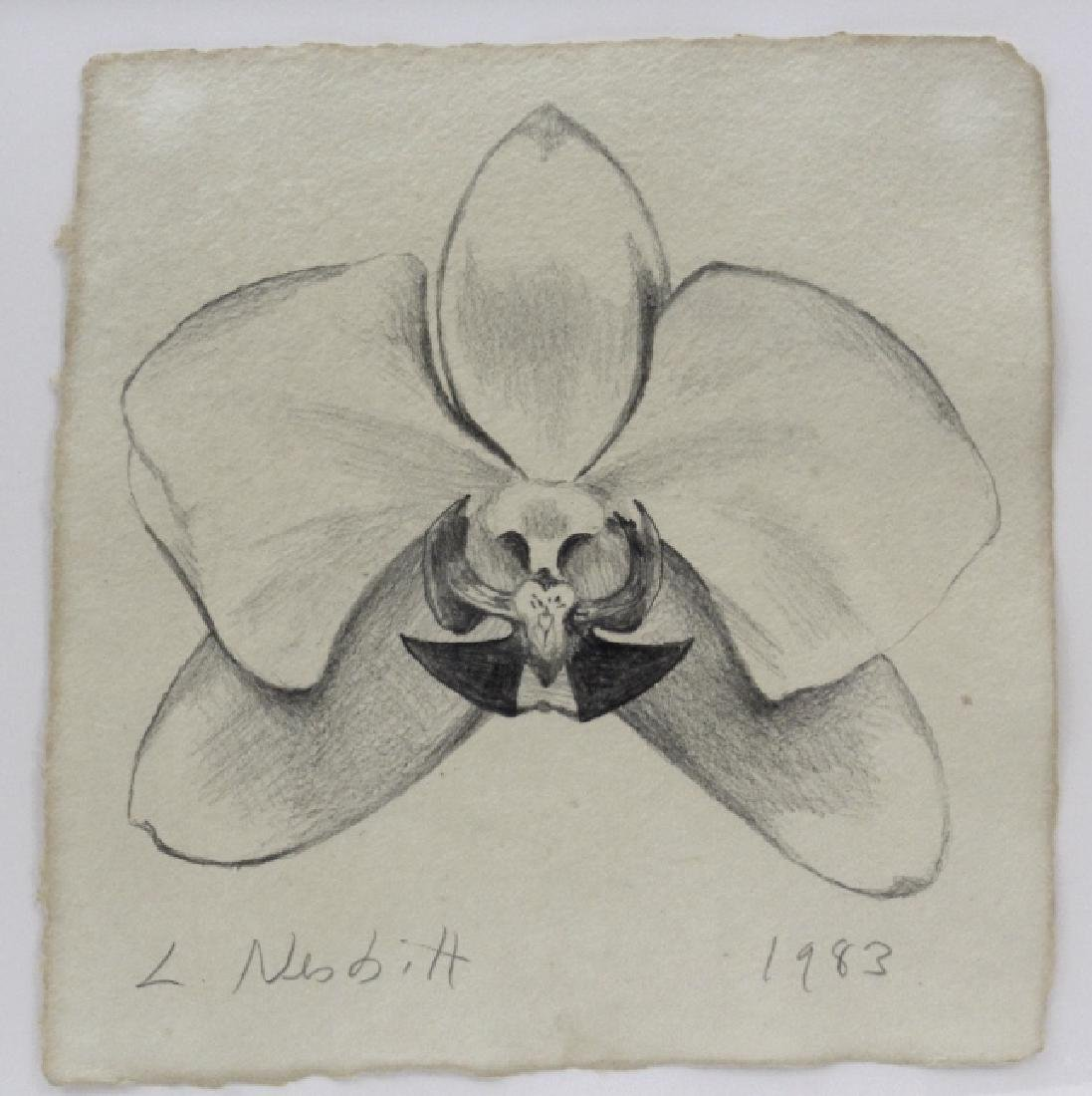 Pair LOWELL NESBITT Orchid Flower Pencil Drawing - 4