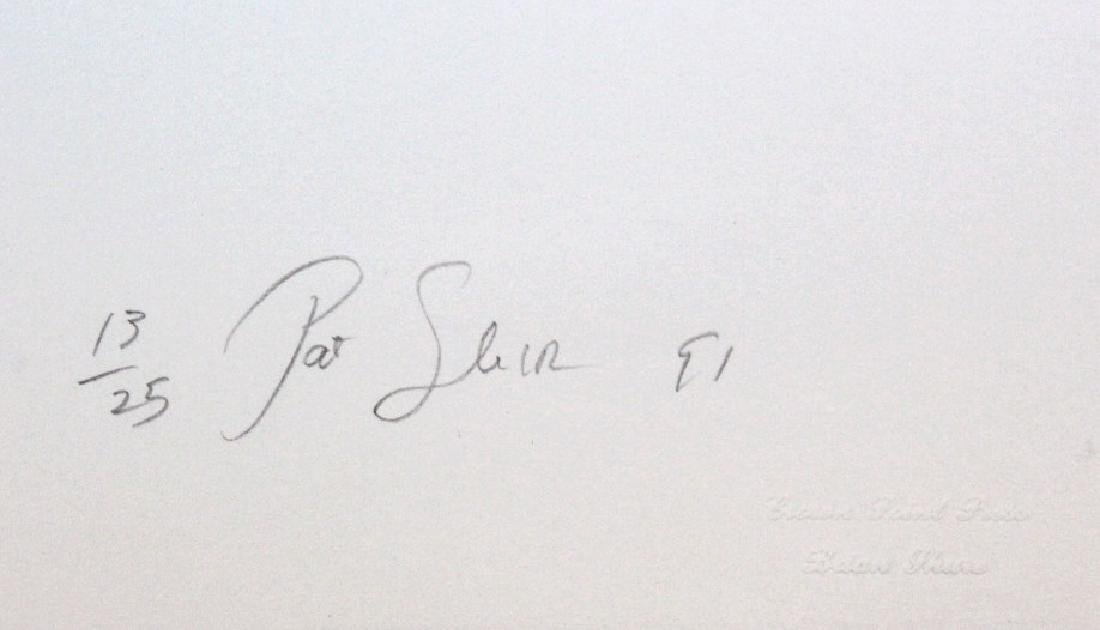 Pat Steir Signed Color Lithograph from BASS MUSEUM - 4