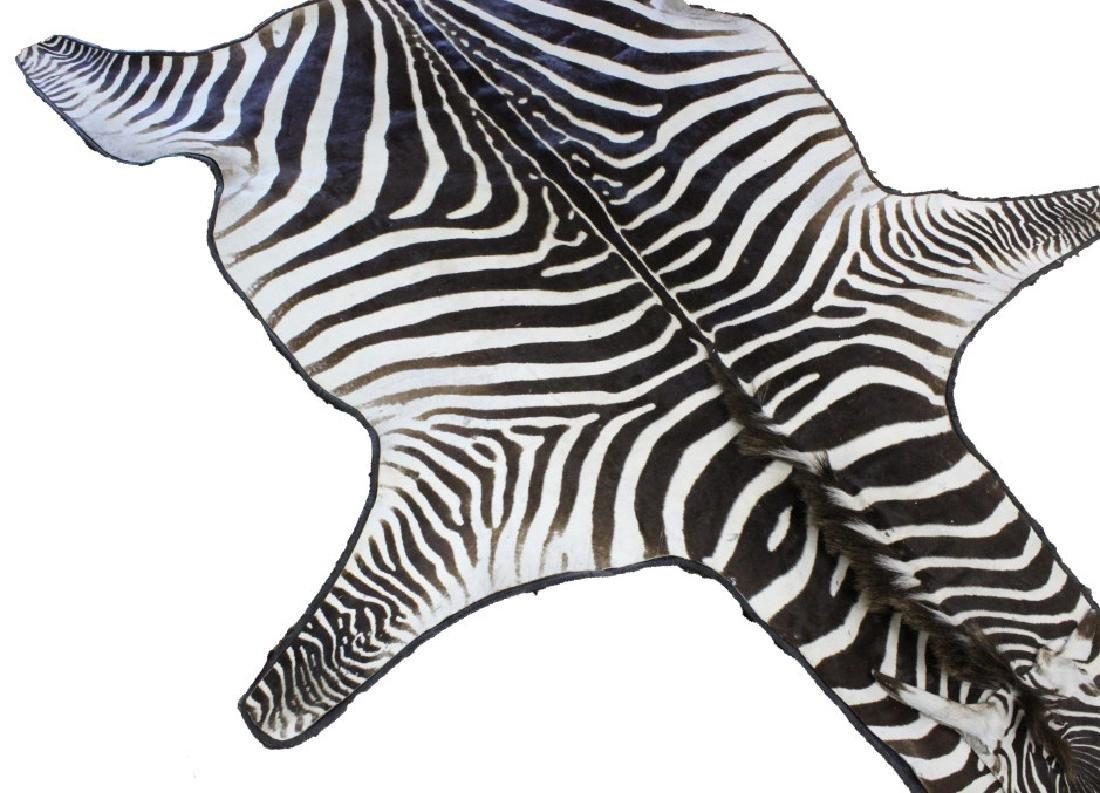 Vintage Leather Trimmed Zebra Hide Skin Rug - 5