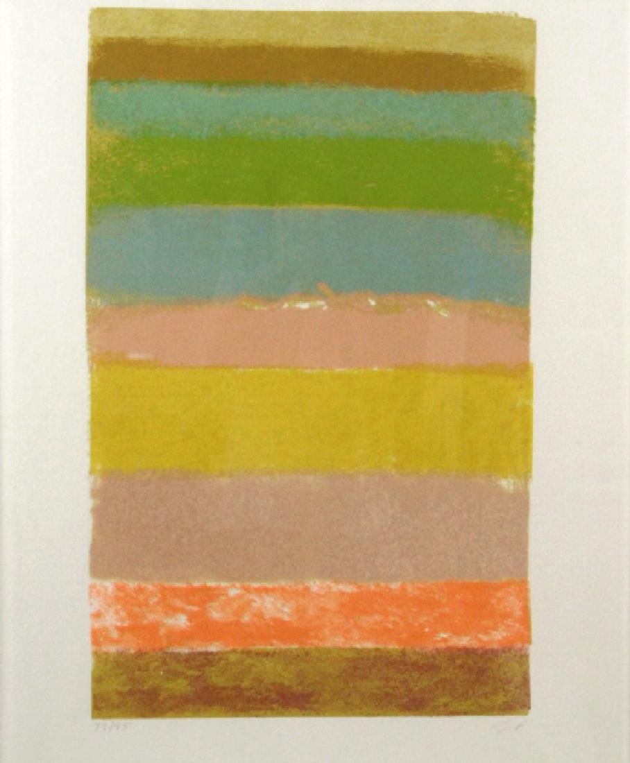 Larry Poons American LE Abstract 1969 Serigraph