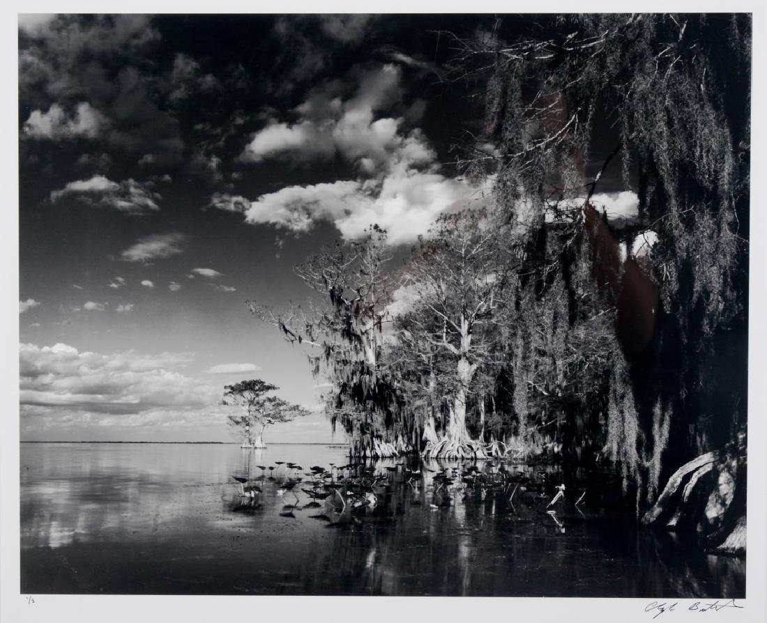 Clyde Butcher Florida Lake Istokpoga Photograph