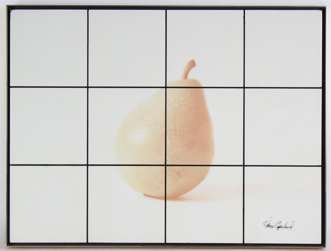 Greg Copeland Studio Metal Tile Pear Art Collage
