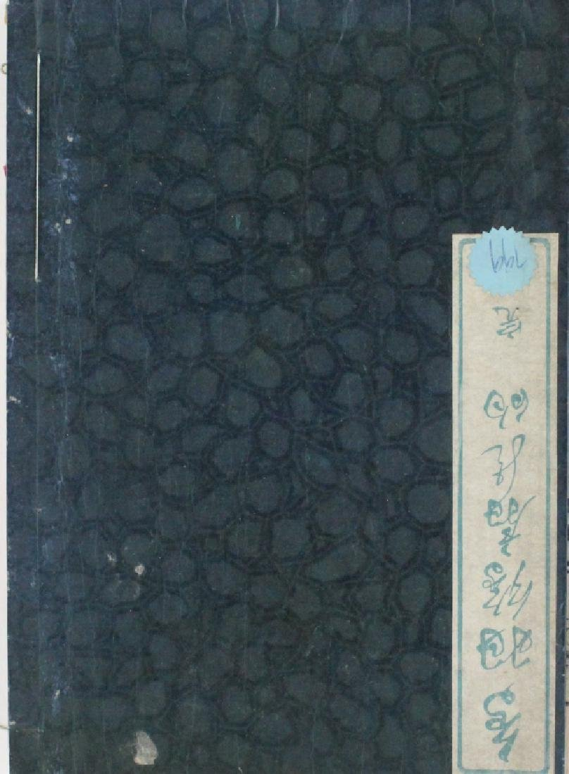 Japanese Caricature Drawing Woodblock Prints Book
