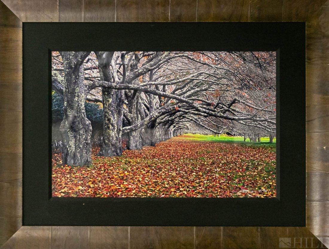 Peter Lik Enchanted Fall Leaves L/E Photograph
