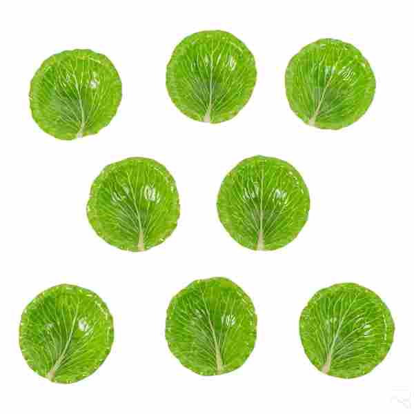 Dodie Thayer Palm Beach Lettuce Ware Set of 8 Bowl