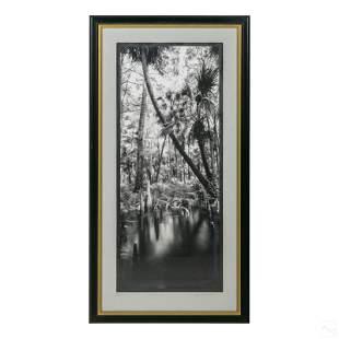 Clyde Butcher Florida Loxahatchee Landscape Print
