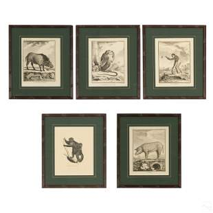 French Framed Wildlife Animals Engravings Group