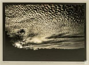 Clyde Butcher (b.1942) Florida Landscape Art Print