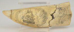 Alaskan Hand Carved Scrimshaw Whale Tooth