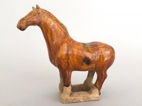 A Chinese Glazed Pottery Model Horse