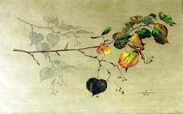 Signed H. Schoning German Watercolor Study Ladybug