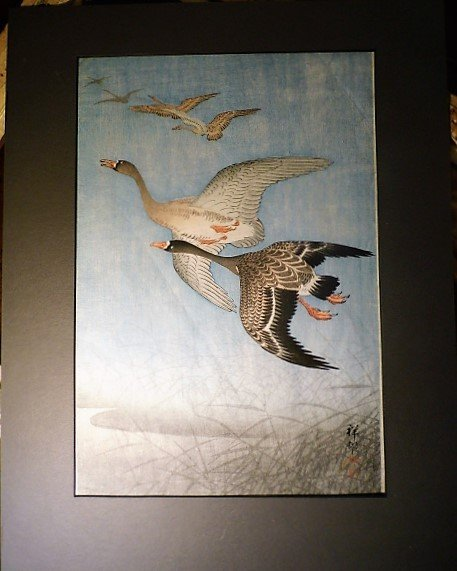 Ohara Koson Woodblock Print Geese in Flight