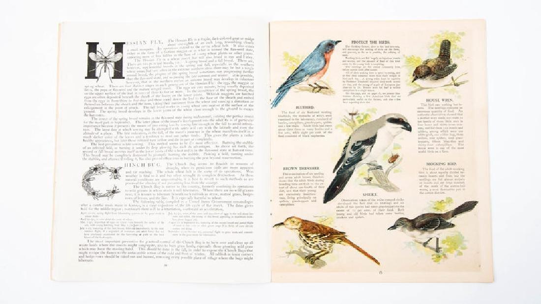1902 Deering Ideals Catalog - 7
