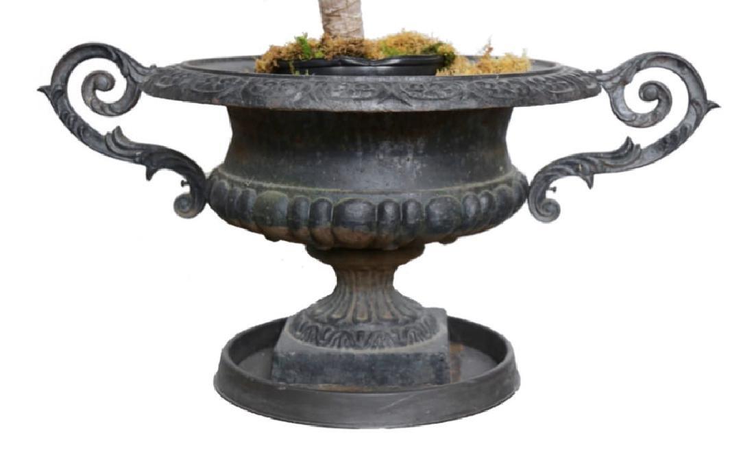 Pair of Victorian Cast Iron Garden Urns - 2