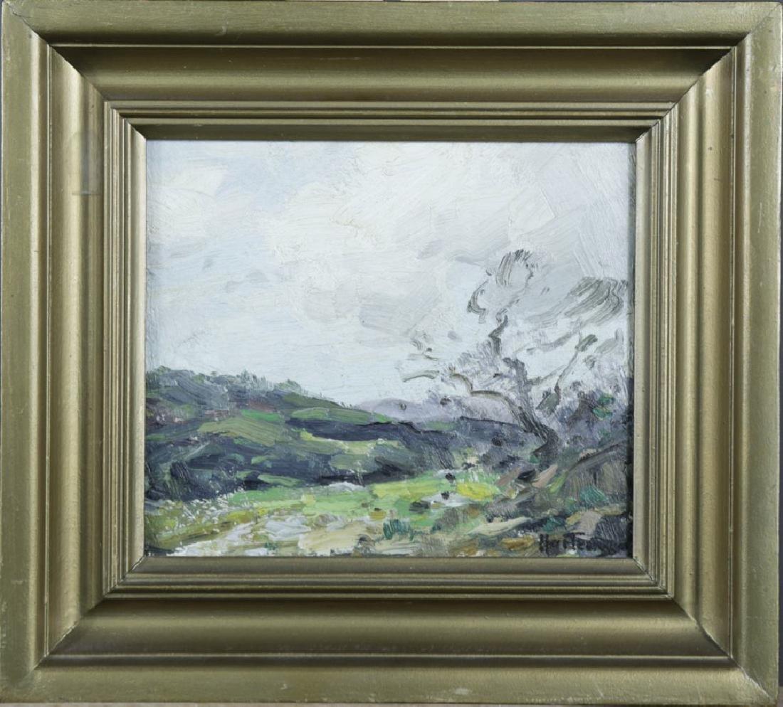 20thc. American School, Landscape Over an Open Field - 2