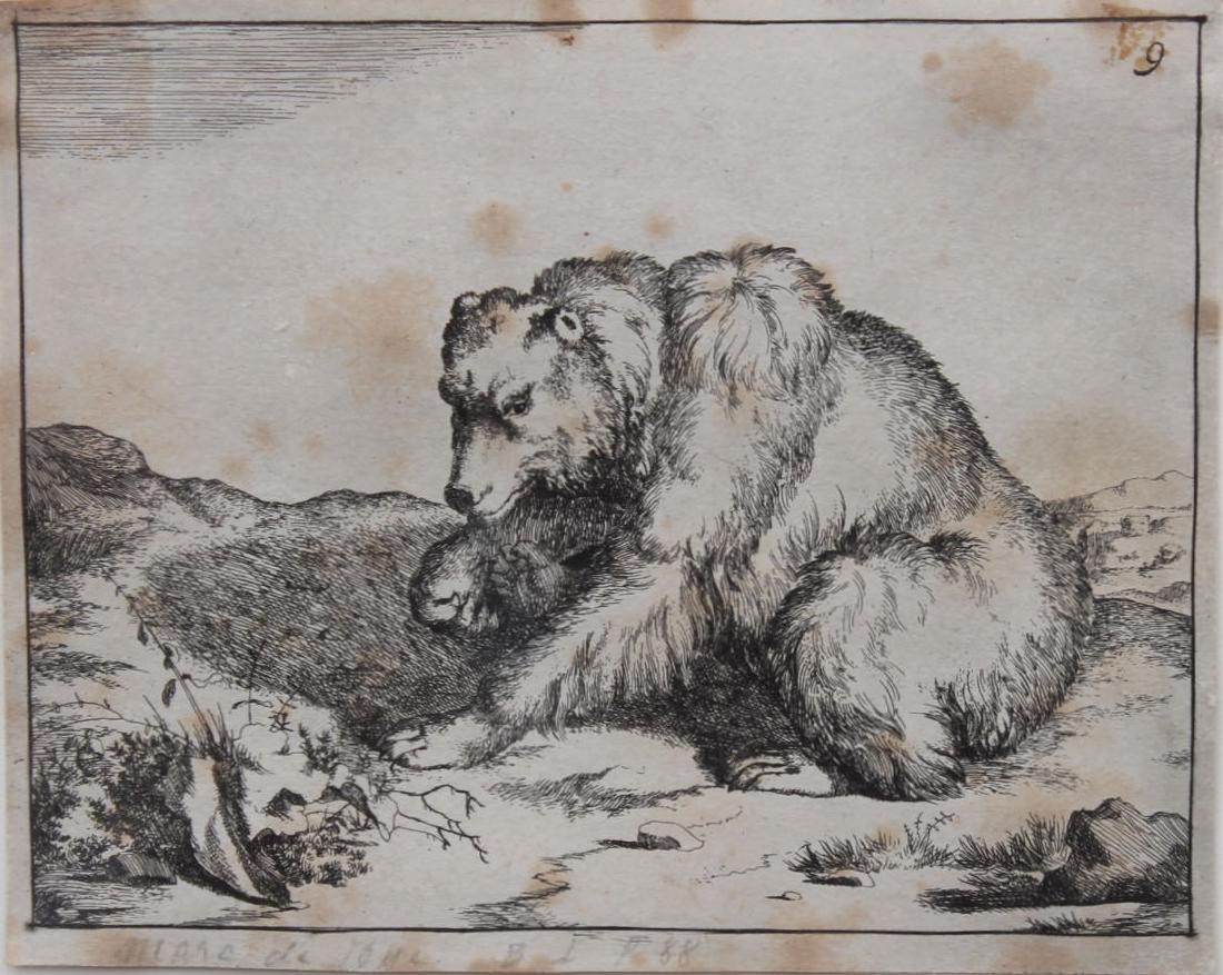 Antique Engraving of a Bear - 2