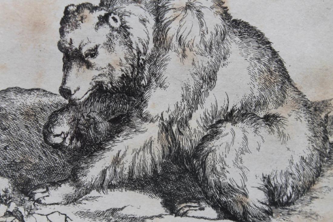 Antique Engraving of a Bear - 4