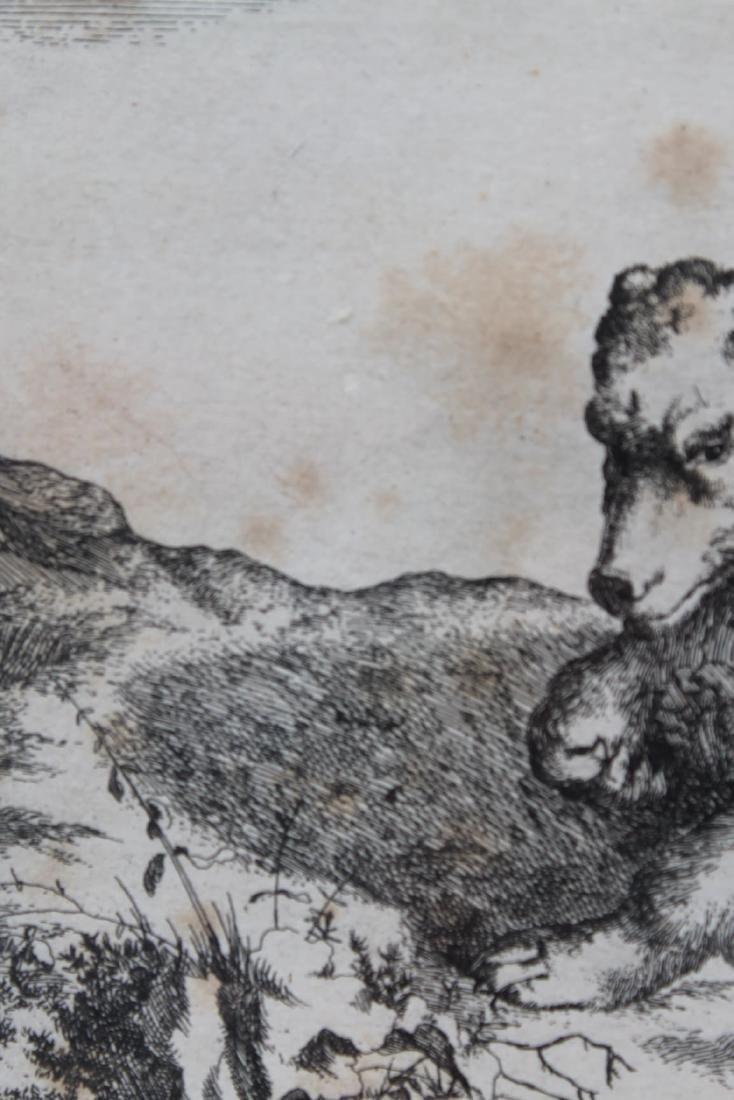 Antique Engraving of a Bear - 5