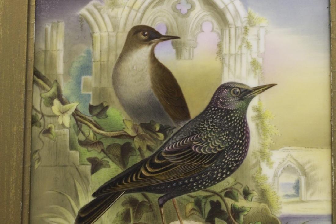 19thc English Porcelain Plaque of Birds Circa 1842 - 2