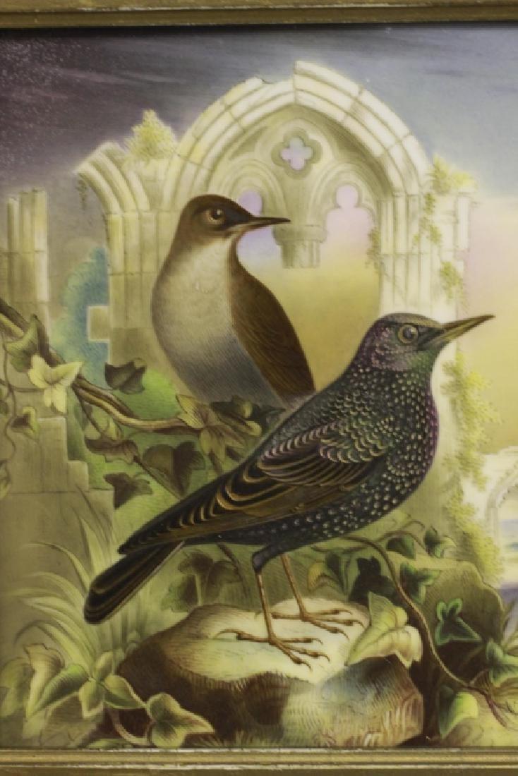 19thc English Porcelain Plaque of Birds Circa 1842 - 3