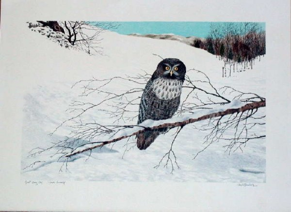 522: Mel Hunter, Great Grey Owl, Stone Lithograph