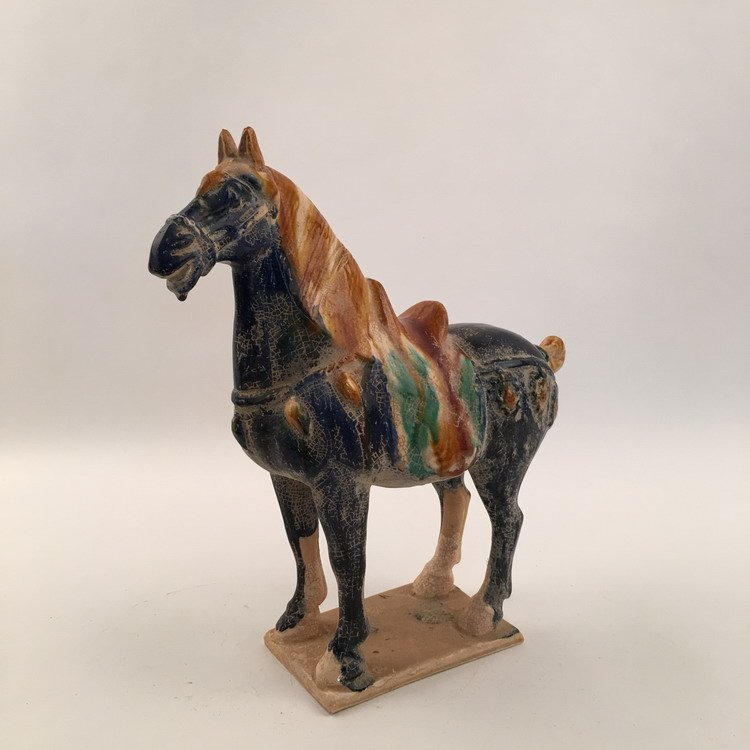 Fine Chinese Tang Horse - 4