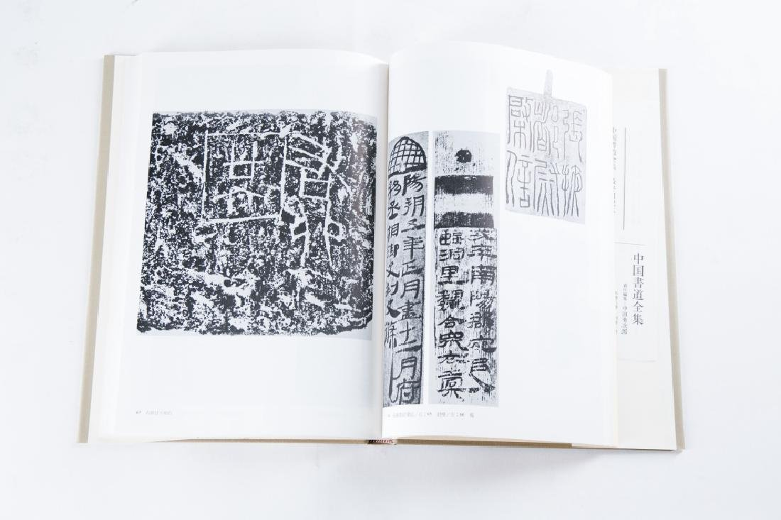 A SET OF NINE BOOKS OF ZHONGGUOSHUDAO
