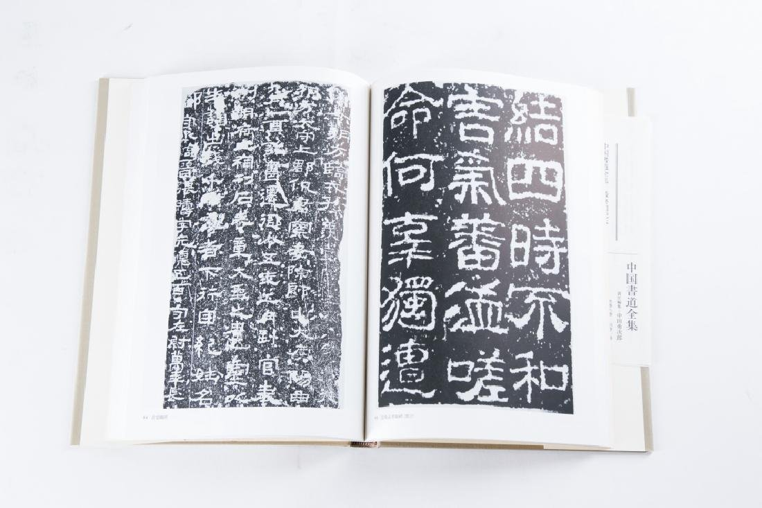 A SET OF NINE BOOKS OF ZHONGGUOSHUDAO - 3
