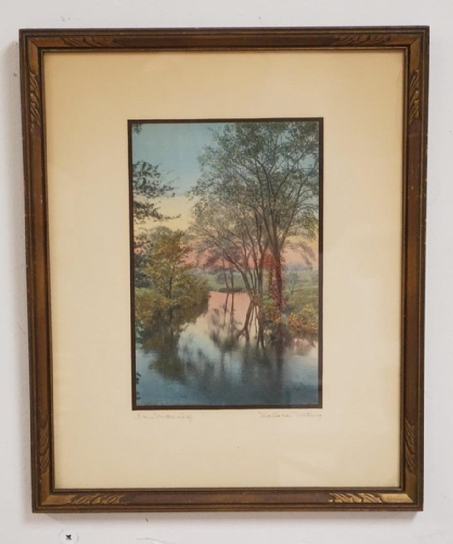 WALLACE NUTTING *IN TENDER LEAF* HAND COLORED PRINT. 6