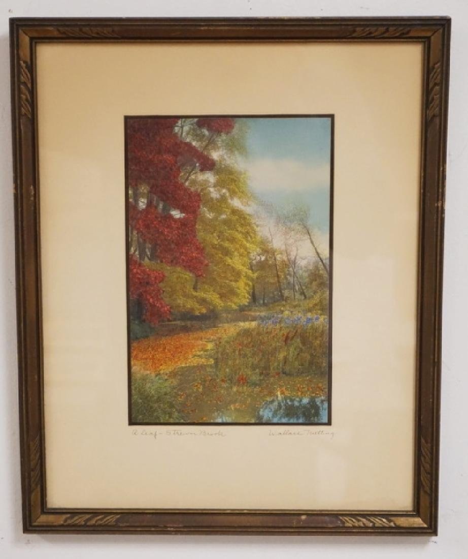 WALLACE NUTTING *A LEAF STREWN BROOK* HAND COLORED