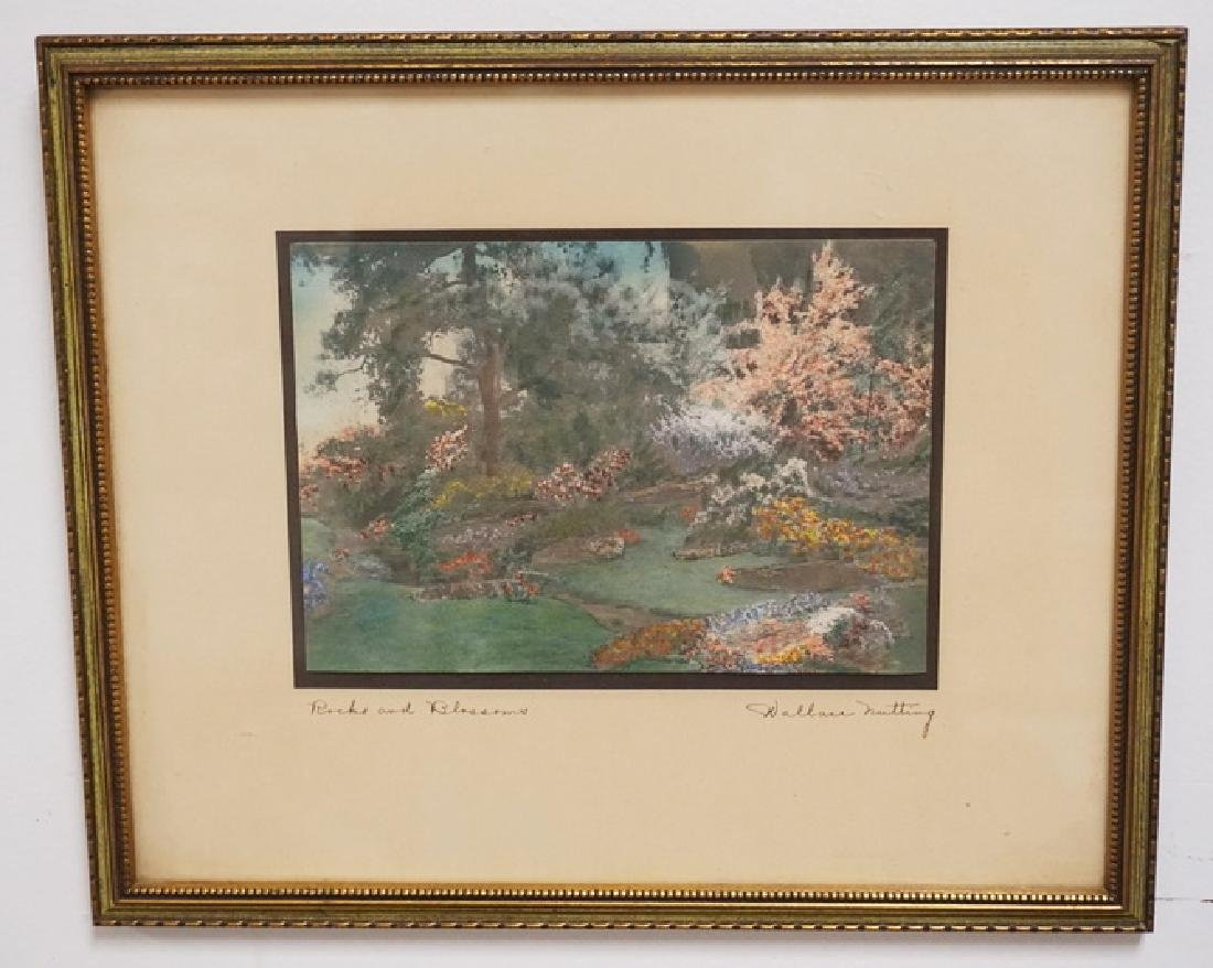 WALLACE NUTTING *ROCKS AND BLOSSOMS* HAND COLORED