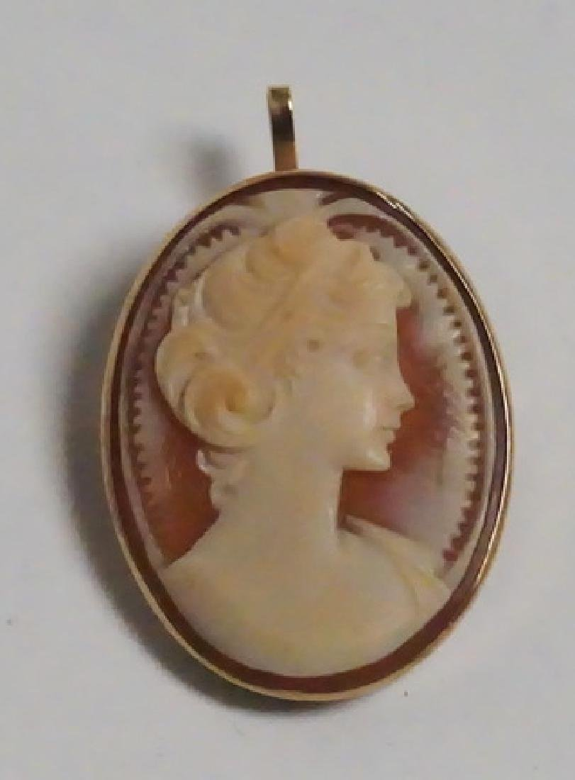 CARVED CAMEO PENDANT/BROOCH IN A 14K GOLD FRAME.