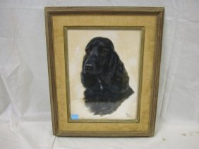 PASTEL OF A SPANIEL BY MOLLY HOMFORD NORTHROP; 12 I